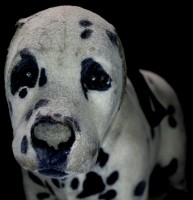 """101 Dalmatians"" Walt Disney Stuffed Dog Screen Used Movie Prop (PA LOA) at PristineAuction.com"