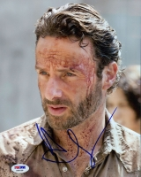 """Andrew Lincoln Signed """"The Walking Dead"""" 8x10 Photo (PSA COA) at PristineAuction.com"""